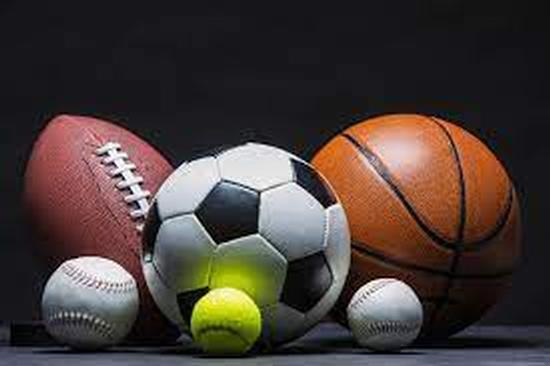 Check out all the sports offered at ELH!